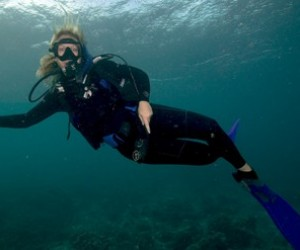 Scuba Diving Industry Experience